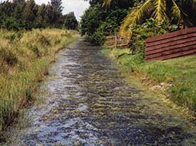 aquagenix-canal-before-a