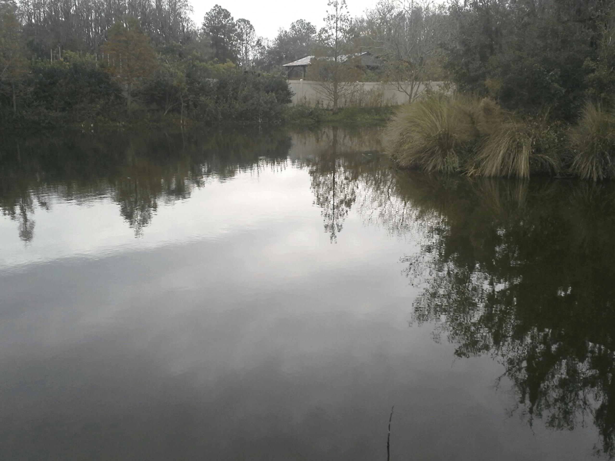 img-aquagenix-Carrollwood-Crossing-After