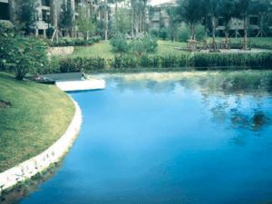 img-aquagenix-wetlandprograms-after